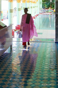 we visited many monasteries with both monks and nuns. The nuns dress in pink, but still have shaved heads like monks