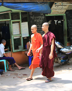 the monks tend to wear maroon in one area and saffron in other areas