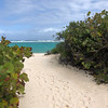 Loblolly Bay, Anegada