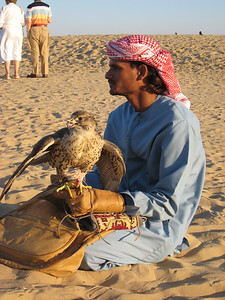 Falcon and trainer