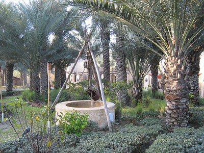 Gardens at Bab al Shams