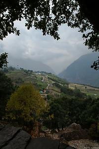 Tree Framed Valley