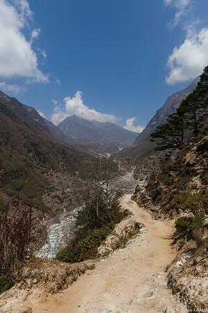 Treking Trail