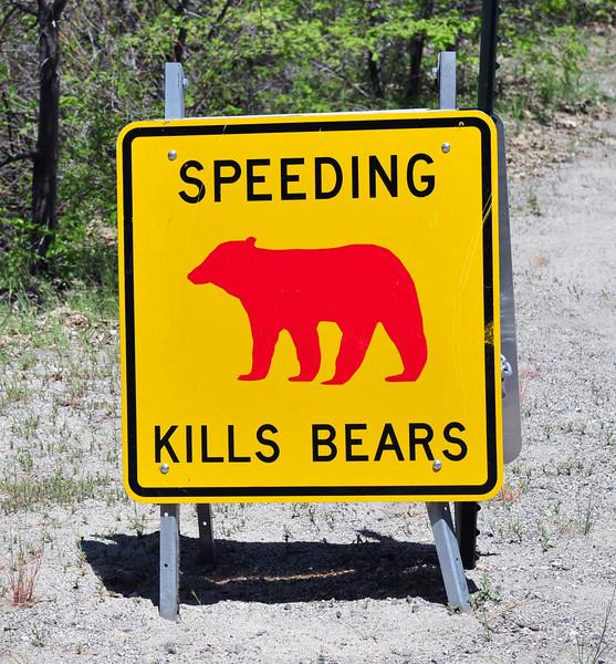 Bear Sign. Yosemite National Park.