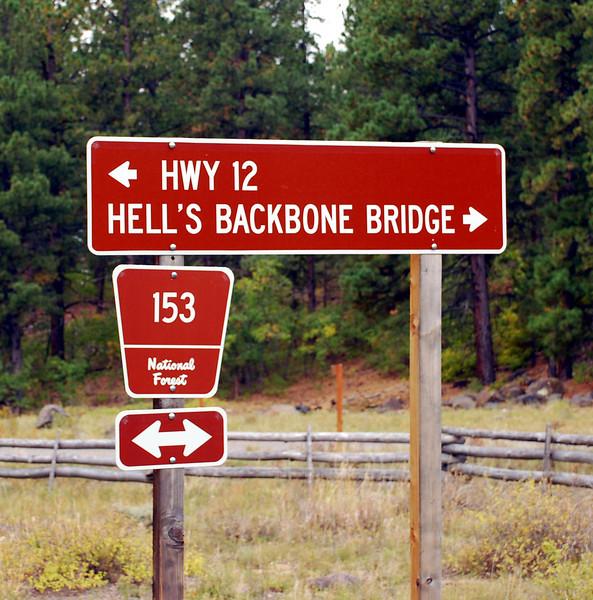 DSC_0666 hells backbone