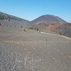 Painted dunes and Cinder Cone