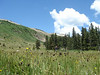 Off the trail, hiking through a meadow on the way to Horseshoe Lake (7.16.10)