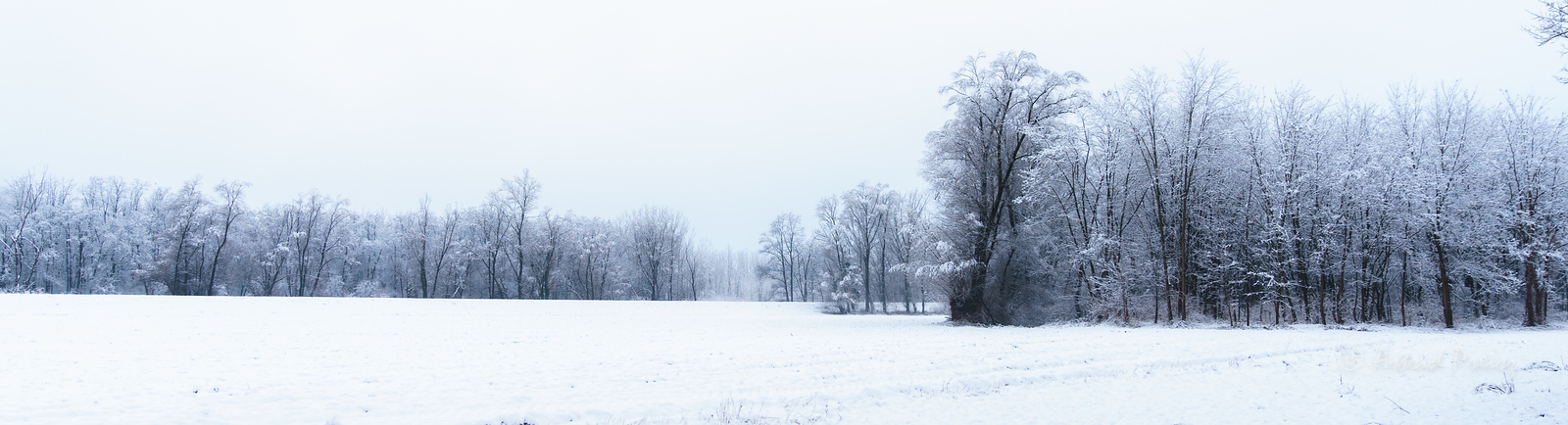 Winter Snow-0094-X3
