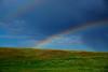 RainbowRt44InSD-2016-SJS-001