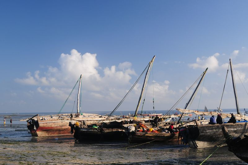 "Fishermen from Zanzibar arriving early one morning in their dhows at the old port in Bagamoyo. The story of how the ""Fathers of the Holy Ghost,"" as they were called at the time, began their work in Bagamoyo begins with trade - specifically the slave trade between mainland Africa and the island of Zanzibar, about 40 km away."