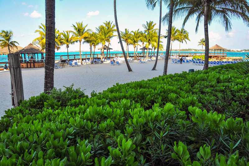 Wyndham Resort on Cable Beach, Bahamas - February 2011