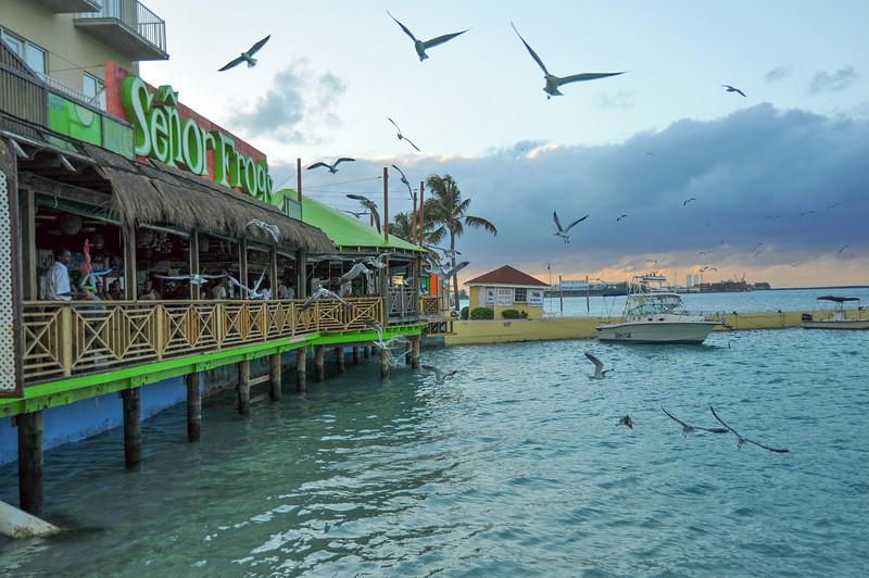 Senor Frogs, Nassau, Bahamas - February 2011