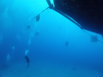 © Joseph Dougherty. All rights reserved.  The Cobia Cage dive site on Eleuthera, Bahamas.