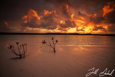 Long Island, Bahamas 720