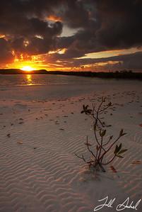 Long Island, Bahamas 4824