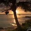 Long Island, Bahamas 1174
