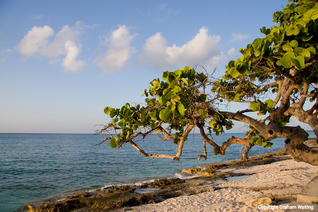 West of Nassau Bahama, beach scene