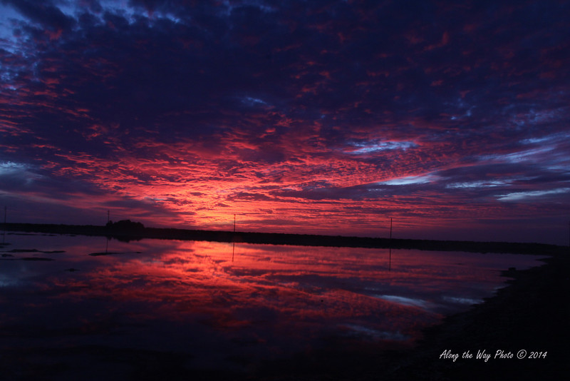 Guerrero Negro 5108<br /> Sunset on ponds in Guerrero Negro.