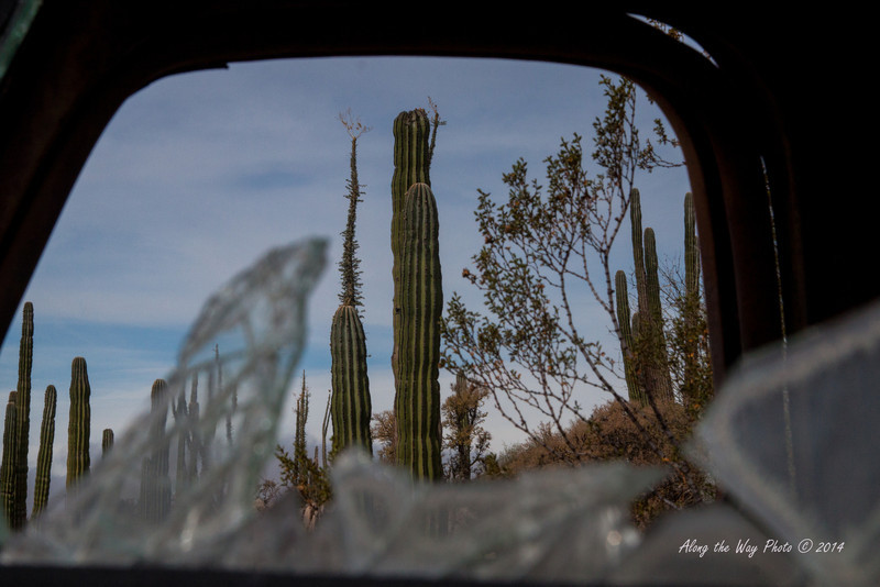 Catavina 4358<br /> Looking through the side window of the pickup into the desert in the Central Desert In the Baja Peninsula.