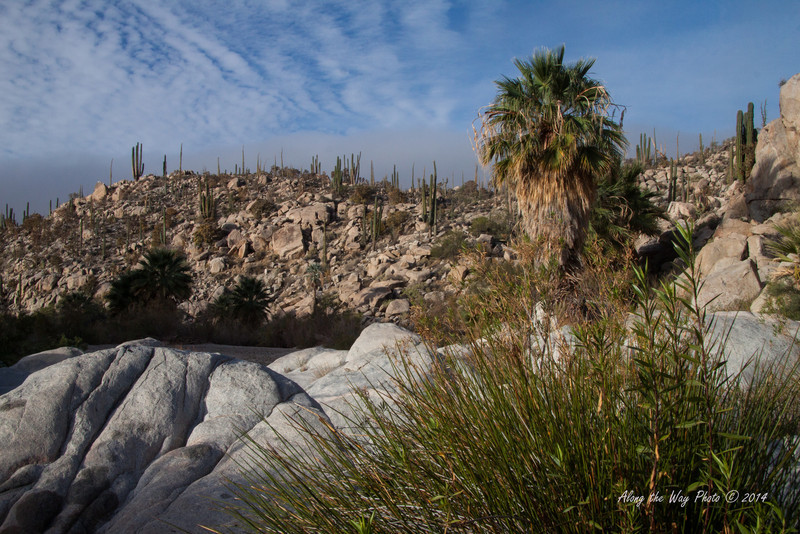 Catavina 4300<br /> Catavina Boulder field in the Baja Peninsula in the Central Desert.