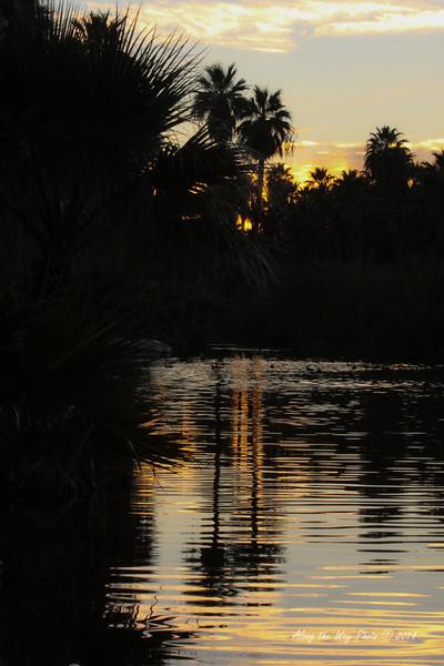 San Ignacio 5390<br /> Sunset on a freshwater lagoon just outside of San Ignacio, Baja California.