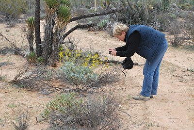 Therese in action - no flower was to small for her