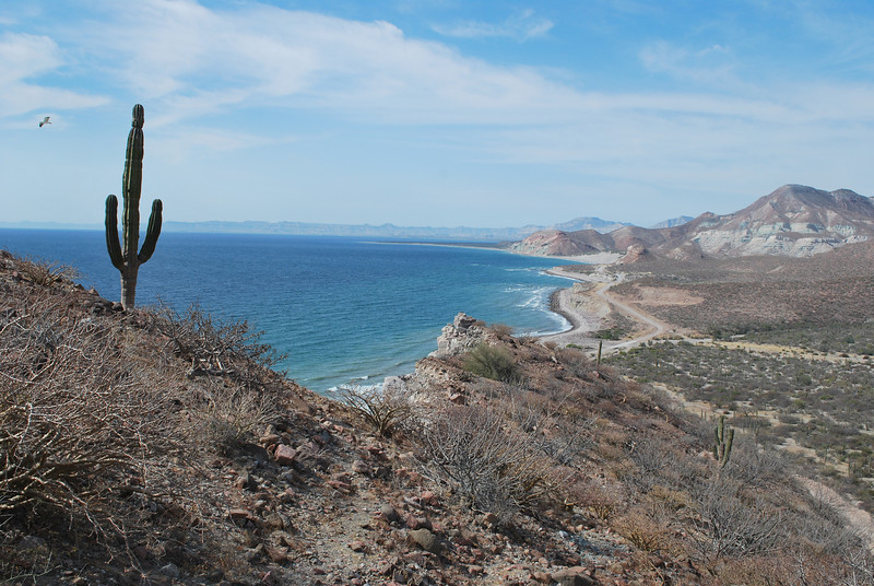 coastline north of La Paz - Punta Coyote?