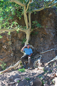 Heinz in shade of fig tree on day three of our on foot expedition