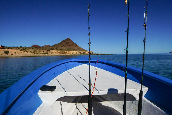 The Baja California Trip
