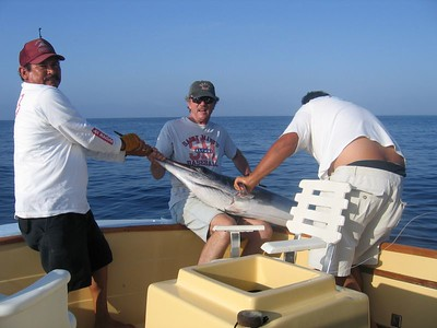Baja Fishing 2005