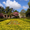 Spring flowers in the Alcazar garden,  Balboa Park, San Diego