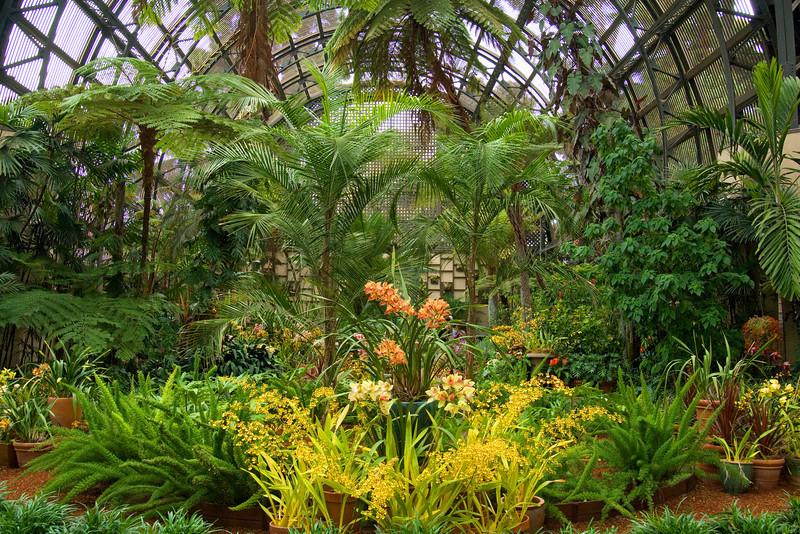 Inside the Botanical Building at Balboa Park.