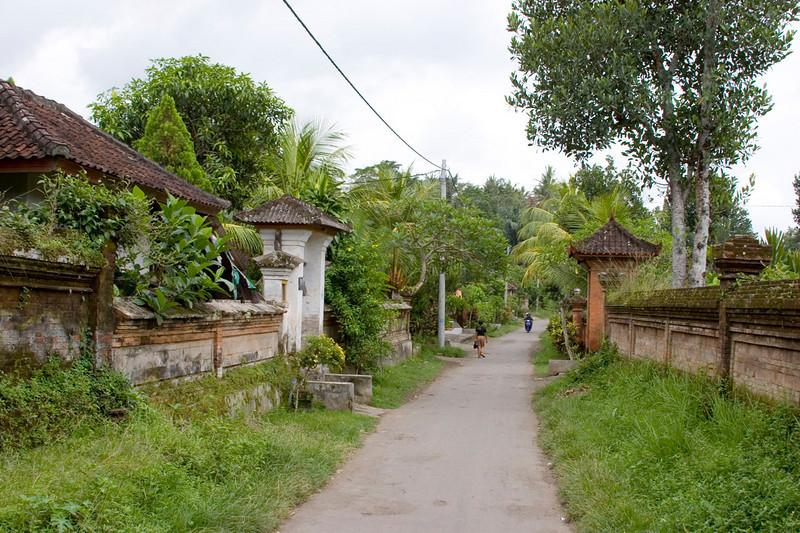 The main street in Wyan's village