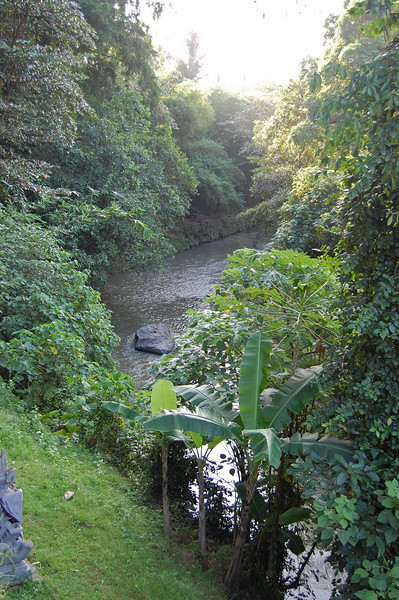 View of the Petanu river from the open-air spa.