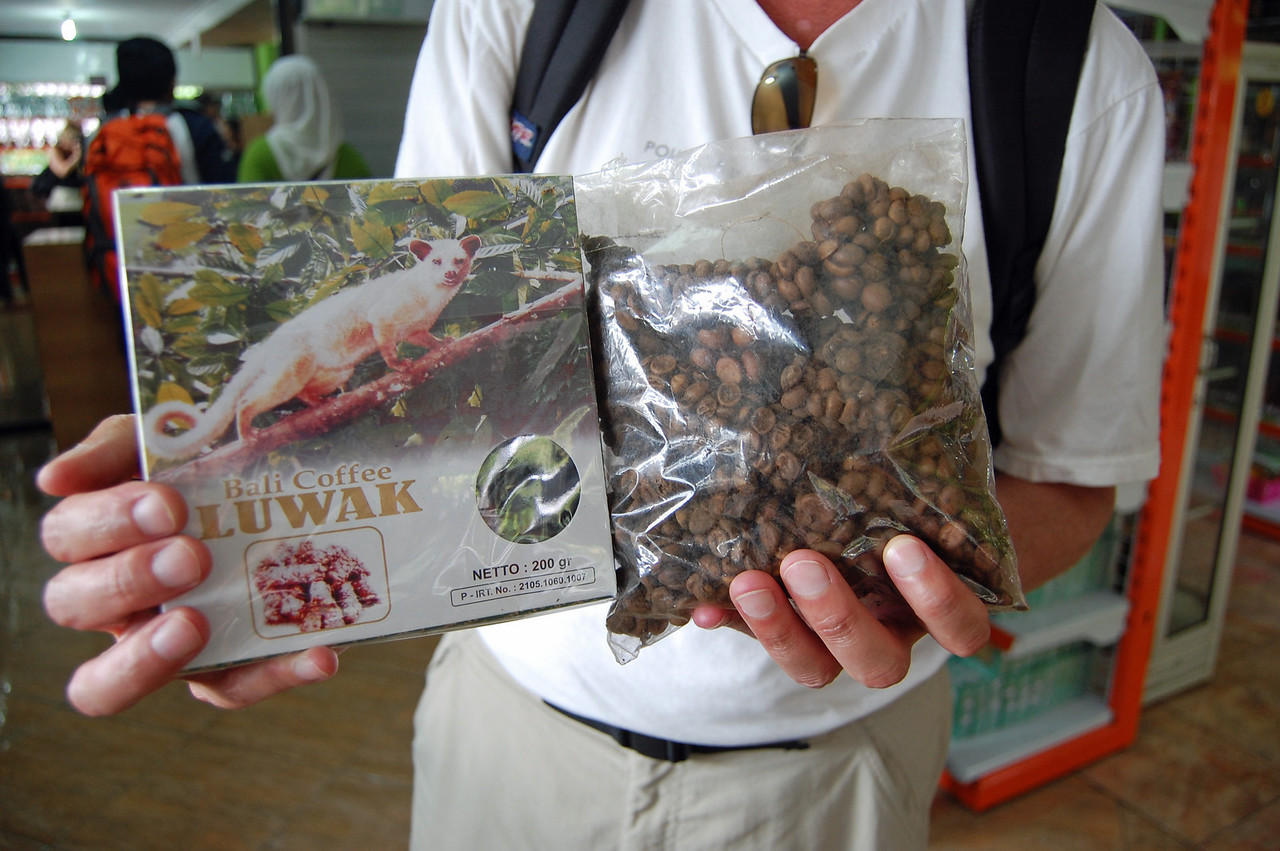 "We call it the ultimate ""shitty"" coffee --- they feed coffee beans to the Luwaks, wait for them to poop them back out, roast them up and voila!  On top of that, they charge $55 USD to buy a bag!  No, we didn't, but did have a sample cup."