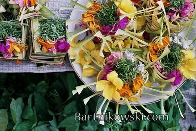 Temple Offerings in Bali