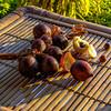 Snakeskin Fruit, Salak (Salacca zalacca)