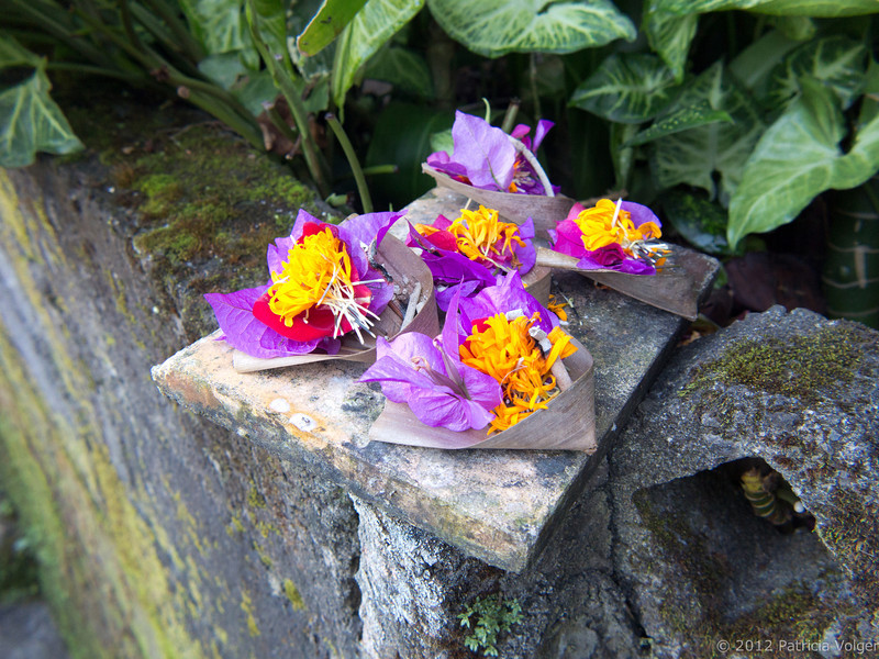 Offerings at Meme Surung Homestay, Munduk, Bali