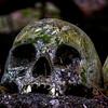 Bali Skulls 3