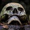Bali Skulls 4