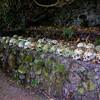 Bali Skulls 8