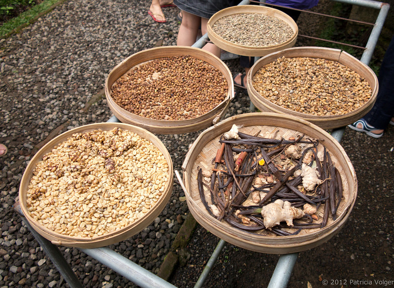 Luwak coffee and spices drying in the sun