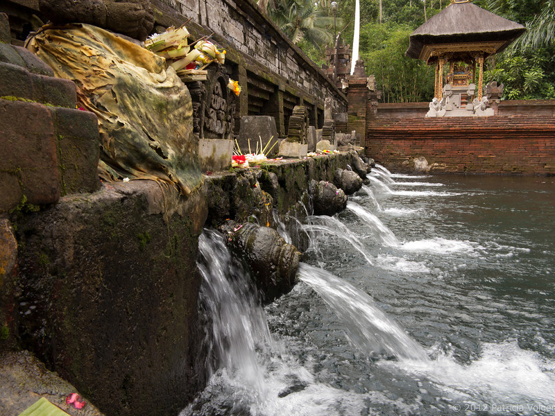Holy water at the Pura Tirta Empul spring temple.