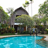 Plumerias everywhere......Puri Dalem Hotel, Sanur, Bali, Indonesia