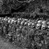 Bali Skulls 7