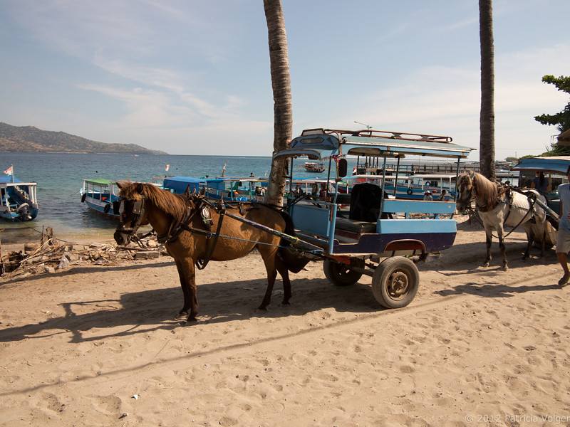 The local transportation on Gili Air. No motorized vehicles here....