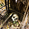 Outdoor Grave Skull