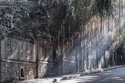 Streets of Ubud ... Bali