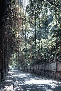 Street scene ... Ubud ... Bali