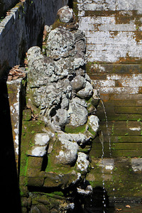 Close up of the bath area of Goa Gajah. Elephant Cave, is located on the island of Bali near Ubud and a short distance from Bedulu. Built in the 9th century, it served as a sanctuary. A carved entrance depicts entangling leaves, rocks, animals, ocean waves and demonic human shapes running from the gaping mouth which forms the entrance to the cave. The facade of the cave is a relief of various menacing creatures and demons carved right into the rock at the cave entrance. The primary figure was once thought to be an elephant, hence the nickname Elephant Cave. The site is mentioned in the Javanese poem Desawarnana written in 1365. Inside the cave one finds the Shiva lingum.  The monstrous Kala head that looms above the entrance seems to part the rock with her hands. Similarly decorated hermit cells are also found in Java. The large earrings indicate that the figure is that of a woman. The T-shaped interior of the rock-hewn cave contained niches which probably served as compartments for ascetics.  Goa Gajah is named after Sungai Petanu (Elephant River not an elephant as elephants are not found in Bali) and dates back to the 11th Century where it originally served as a dwelling for Hindu priests. Outside the cave at the pavilion is a statue of Men Brayut, the Balinese woman who together with her husband Pan could not stop having kids. The legend of Men Brayut is also represented in local Buddhist writings, under the name of Hariti, indicating a possible Buddhist association with Goa Gajah as well as Hindu.  Outside the cave, an extensive bathing place on the site was not excavated until the 1950s. These appear to have been built to ward off evil spirits. It is an UNESCO World Heritage site.